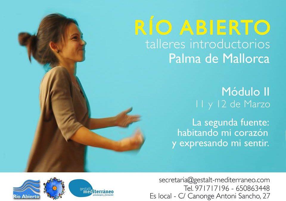 Charlas y talleres previos a la formación en Mallorca