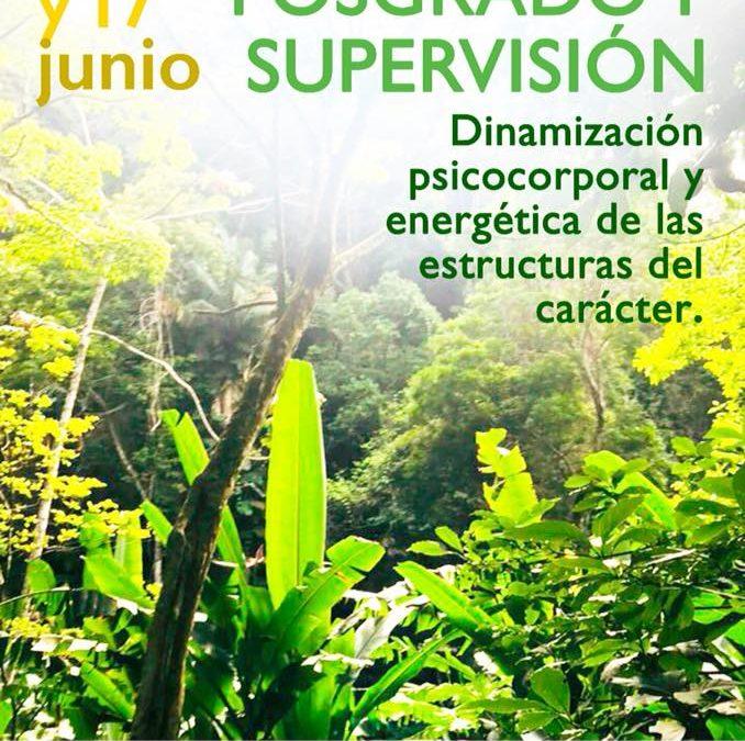 Mari Sol Román en Deltebre: Posgrado sobre dinamización de estructuras de carácter