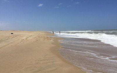 Cabo Polonio: noctilucas en el mar, y en el cielo estrellas